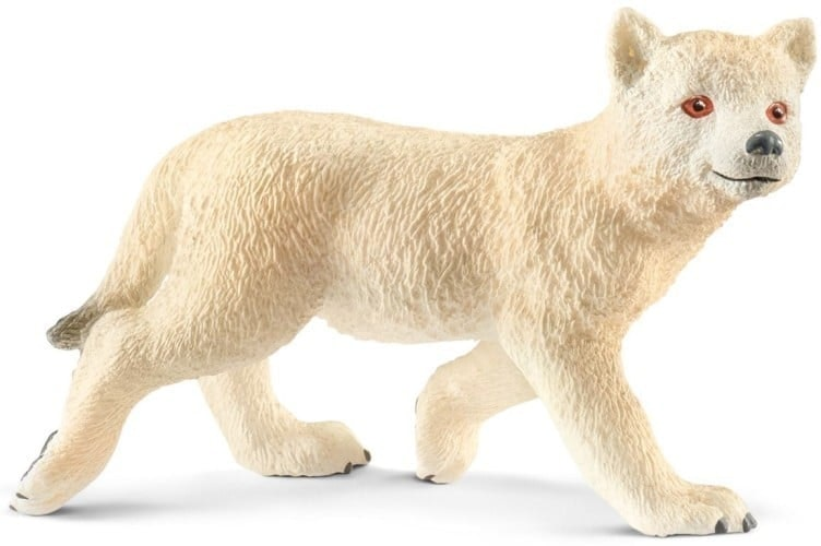 Arktisches Wolfsjunges