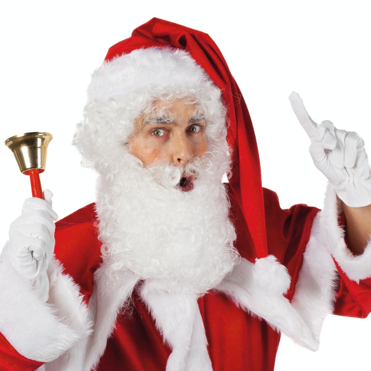 Kerstbaard en pruik