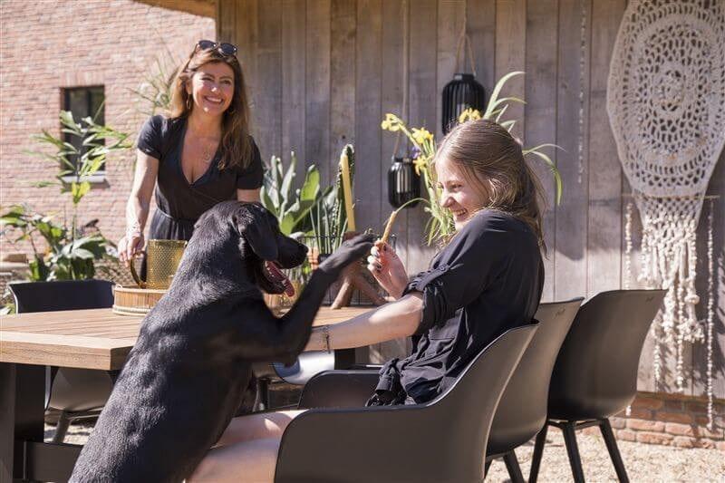 Sophie Studio dining armstoel Carbon Black