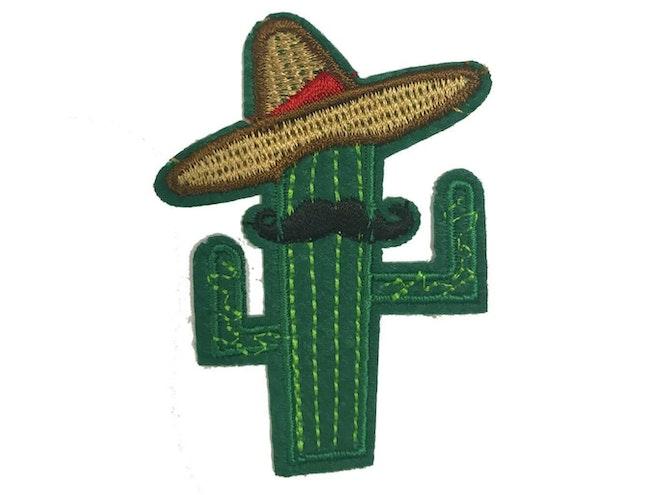 Cactus sombrero 1365 1024